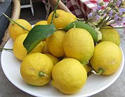 Lemons of Levanto
