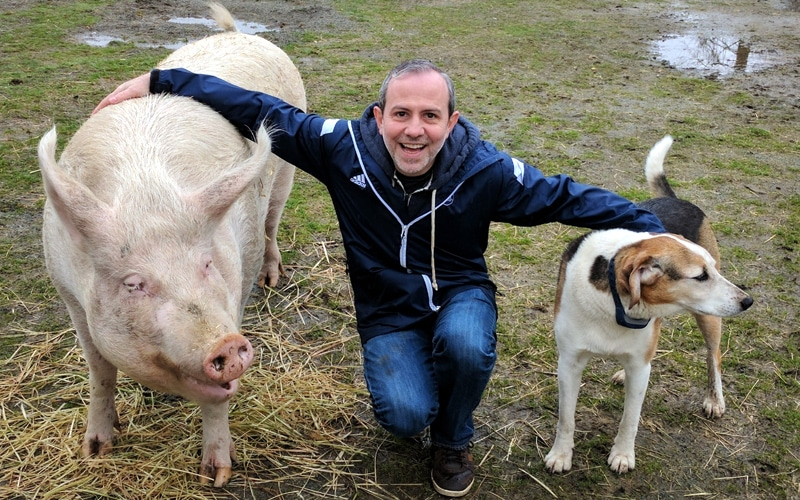 Celebrating seven years of blogging with my new friends at The Happy Herd Sanctuary in Aldergrove, British Columbia